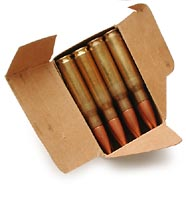 .308 surplus ammunition